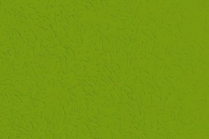 abstract green leaves texture background