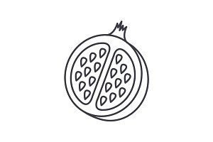 pomegranate vector line icon, sign, illustration on background, editable strokes