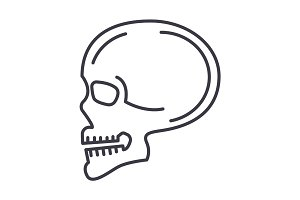 skull front view vector line icon, sign, illustration on background, editable strokes