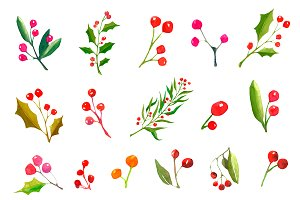 A set watercolor Christmas plants.