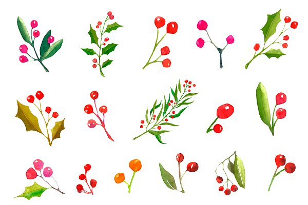 A set watercolor Christmas plants.