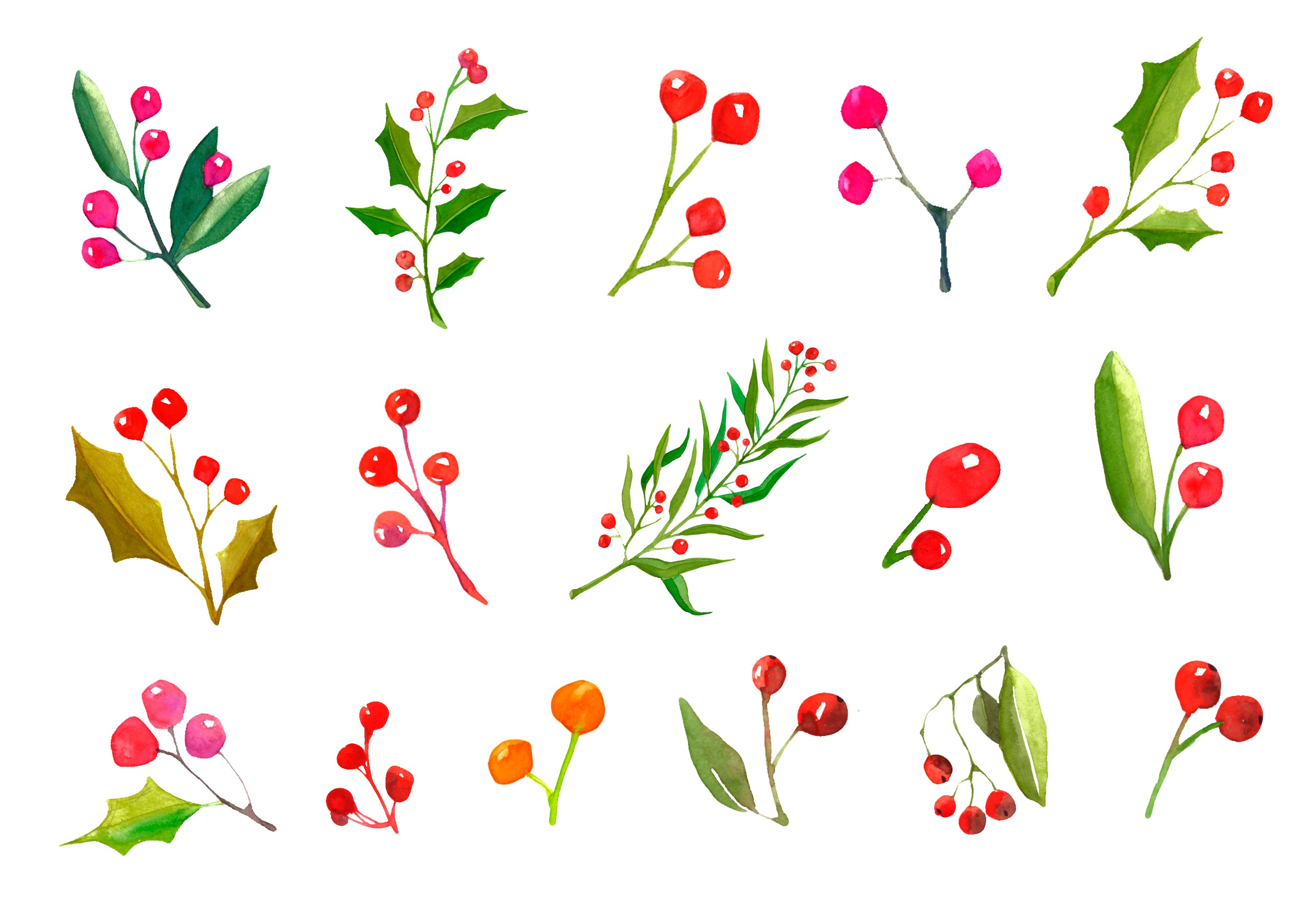 A Set Watercolor Christmas Plants Custom Designed Graphics