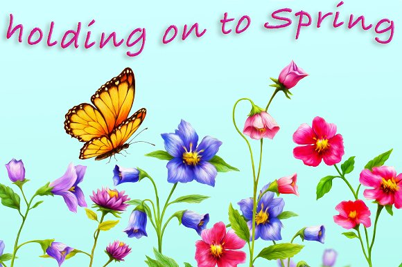 Spring Flowers And Butterflies Illustrations Creative Market
