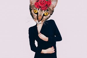 Contemporary art collage. Retro Cat