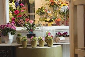 Plant pots and bouquet