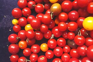 Fall cherry tomatos fresh produce