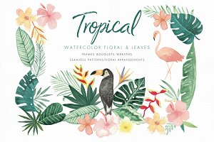 Tropical Florals and Leaves