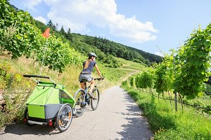 Young Parent Cycling Through Vineyards With Bike Trailer