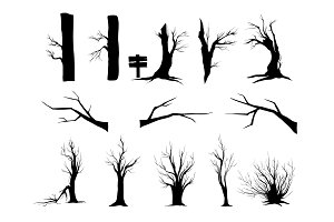 Nature trees. Trees silhouettes