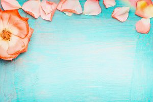 Roses banner on turquoise