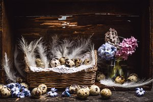 Easter basket with quail eggs