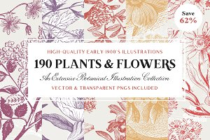 The Vintage Plants & Flowers Bundle