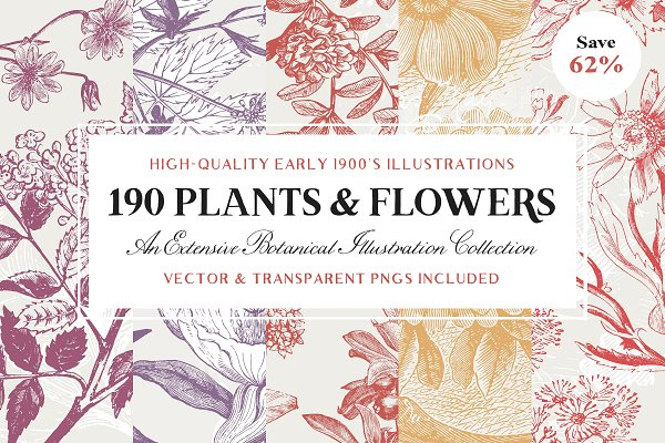 The Vintage Plants & Flowers Bundle