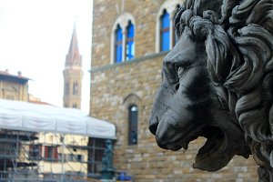 Lion Statue in Firenze, Italy