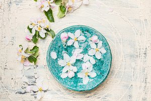 Blue water bowl with white blossom