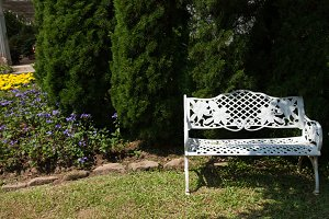 White bench under the tree