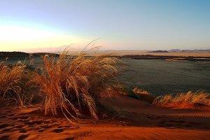 Sunset in the Namib desert.