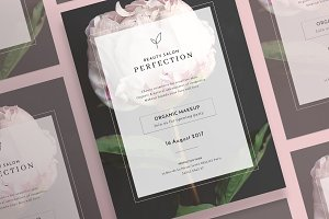 Posters | Perfection Salon