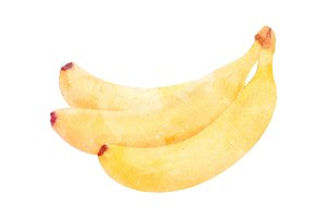 Watercolor banana fruit on white