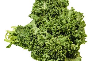 Curly kale leaves isolated