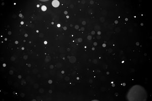Falling snow on black background