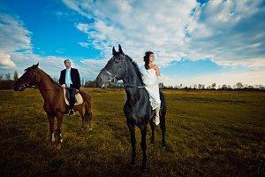 Bride on black horse ride behind