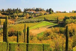 Tuscany sunny hills