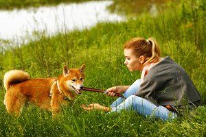 Girl talks to Shiba Inu.