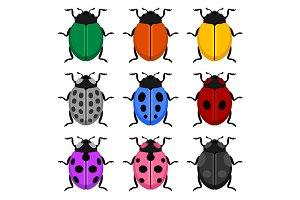 Color Ladybug Set