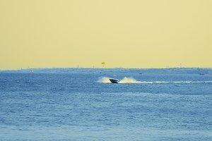 Powerboat ship sails at sunset along tropical sea