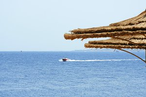 Powerboat ship sails along tropical resort beach