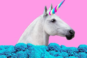 White Party Unicorn in a dreams