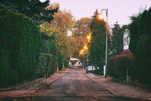 Morning street in autumn