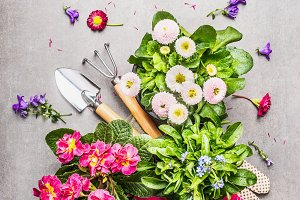Gardening setting