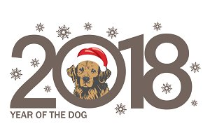 Year of the Dog 2018.Firework