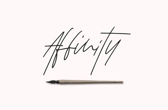 Affinity Font Set Script Fonts Creative Market