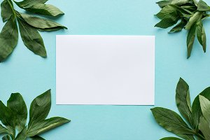Blank white paper in frame of leaves