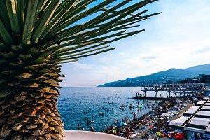 Yalta Summer