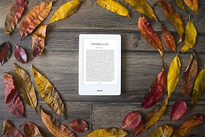 E-Book Reader, Mock-Up