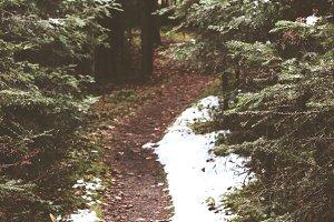 Unknown Path