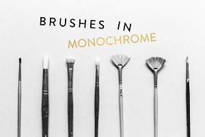 Monochrome Paintbrushes (50% off)