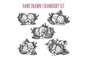 Strawberry sketch icons set