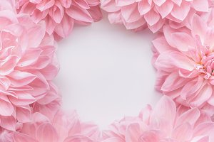 Creative pastel pink flowers frame