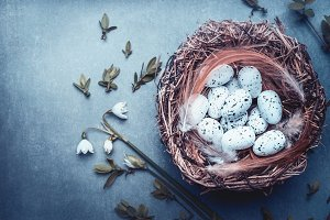 Easter with nest of bird eggs
