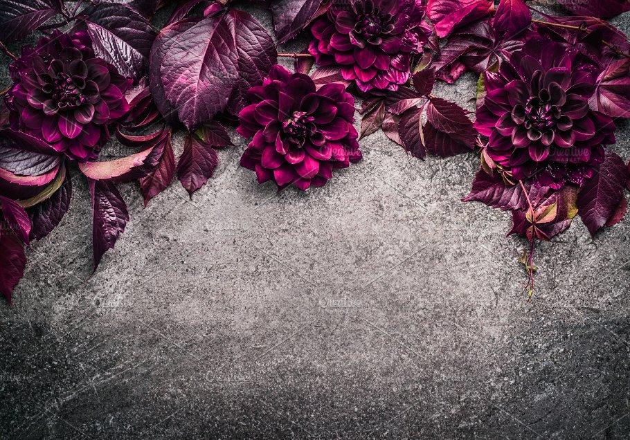 Dark Purple Floral Border Arts Entertainment Photos Creative