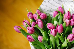 Bouquet of purple tulips