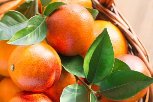 Bloody oranges in the sun.jpg