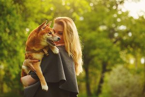 Girl and dog Shiba Inu cuddling