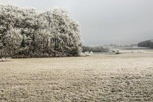 freezing winter landscape
