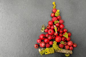 Christmas tree with berries